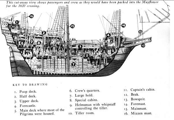 map pilgrim's voyage Interesting findings from the