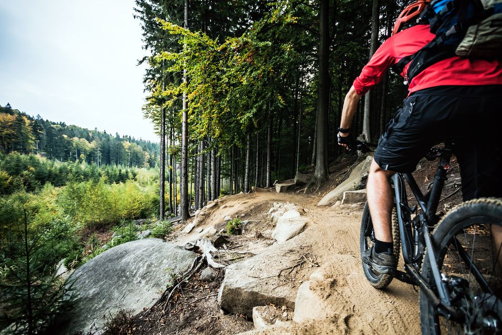 Mountain Bike Trails Bozeman