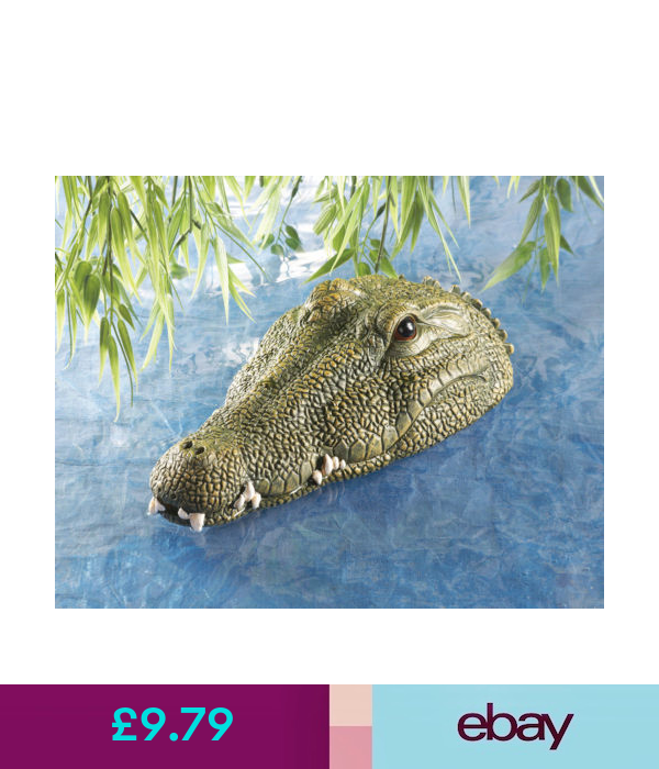 Pond Decor Floating Garden Pond Water Feature Crocodile Alligator Head Garden Ornament Uk Ebay Home Ga Pond Decorations Garden Ornaments Uk Collections Etc
