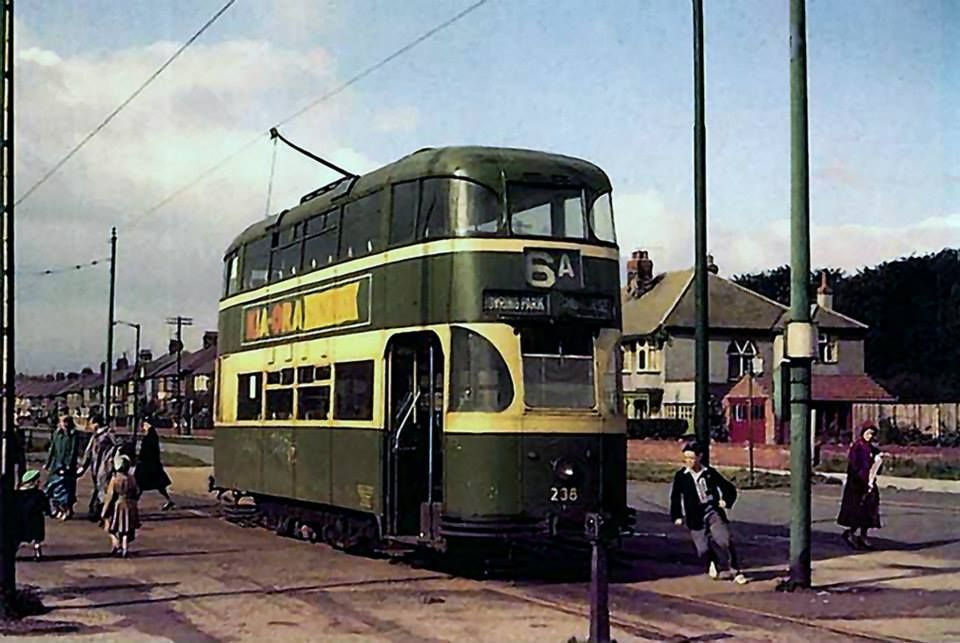 Bowring Park terminus  Courthey Avenue, Liverpool  | Public
