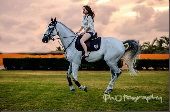 Como fotografiar caballos y jinetes.