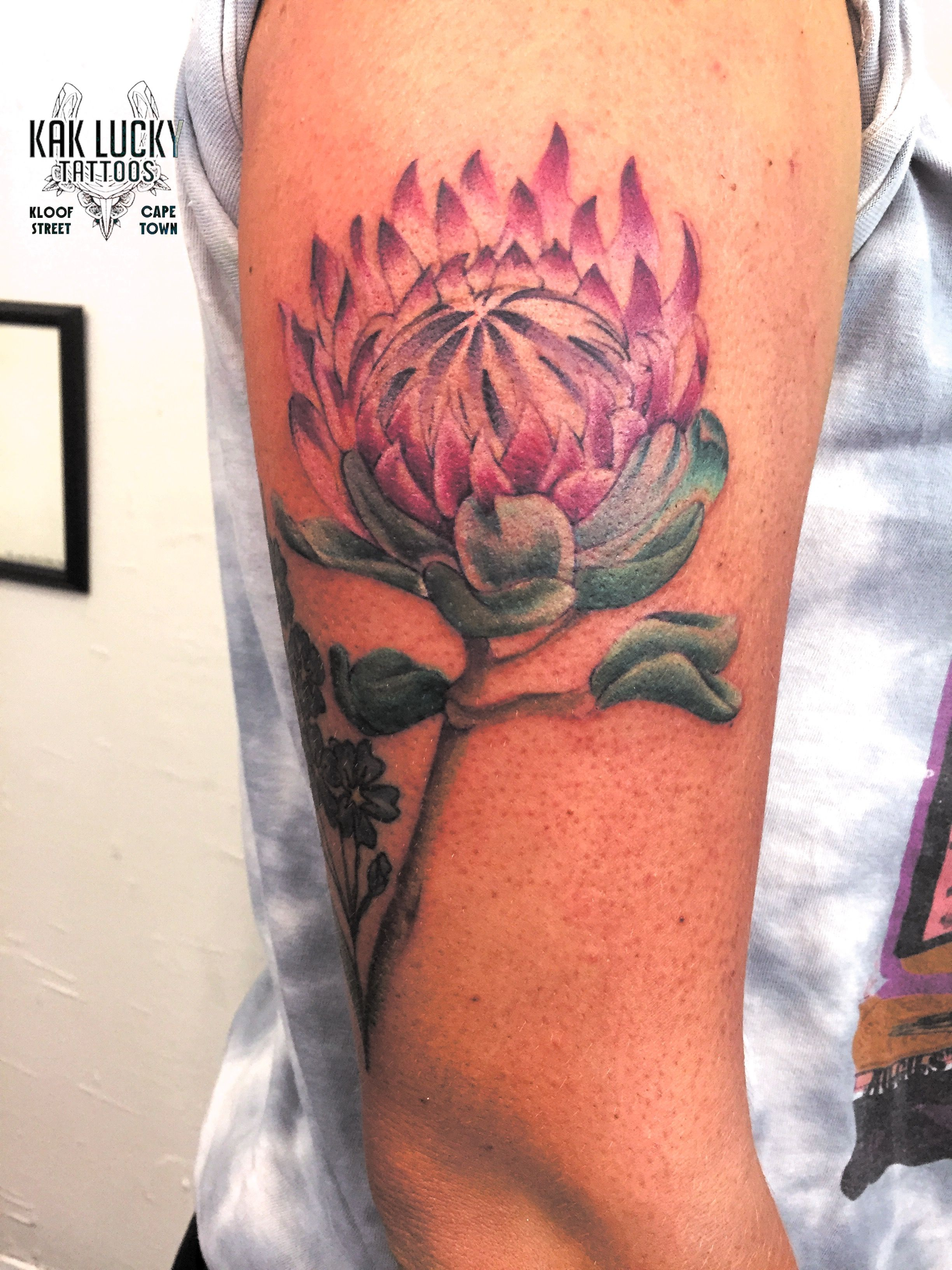 ab8d9270e4fc2 Protea flower by Gareth Doye at Kak Lucky Tattoos. #protea #tattoo #flower  #floral #tattoos #colortattoos #ink
