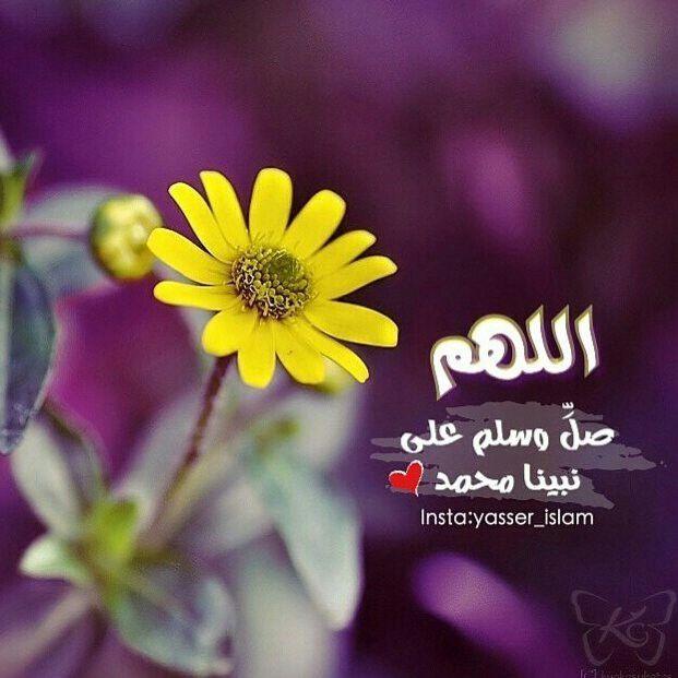 اللهم صل وسلم وزد وبارك على محمد وعلى آله وصحبه أجمعين Plants Islam Insta