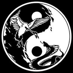 Image result for Wing Chun Kung Fu snake and crane