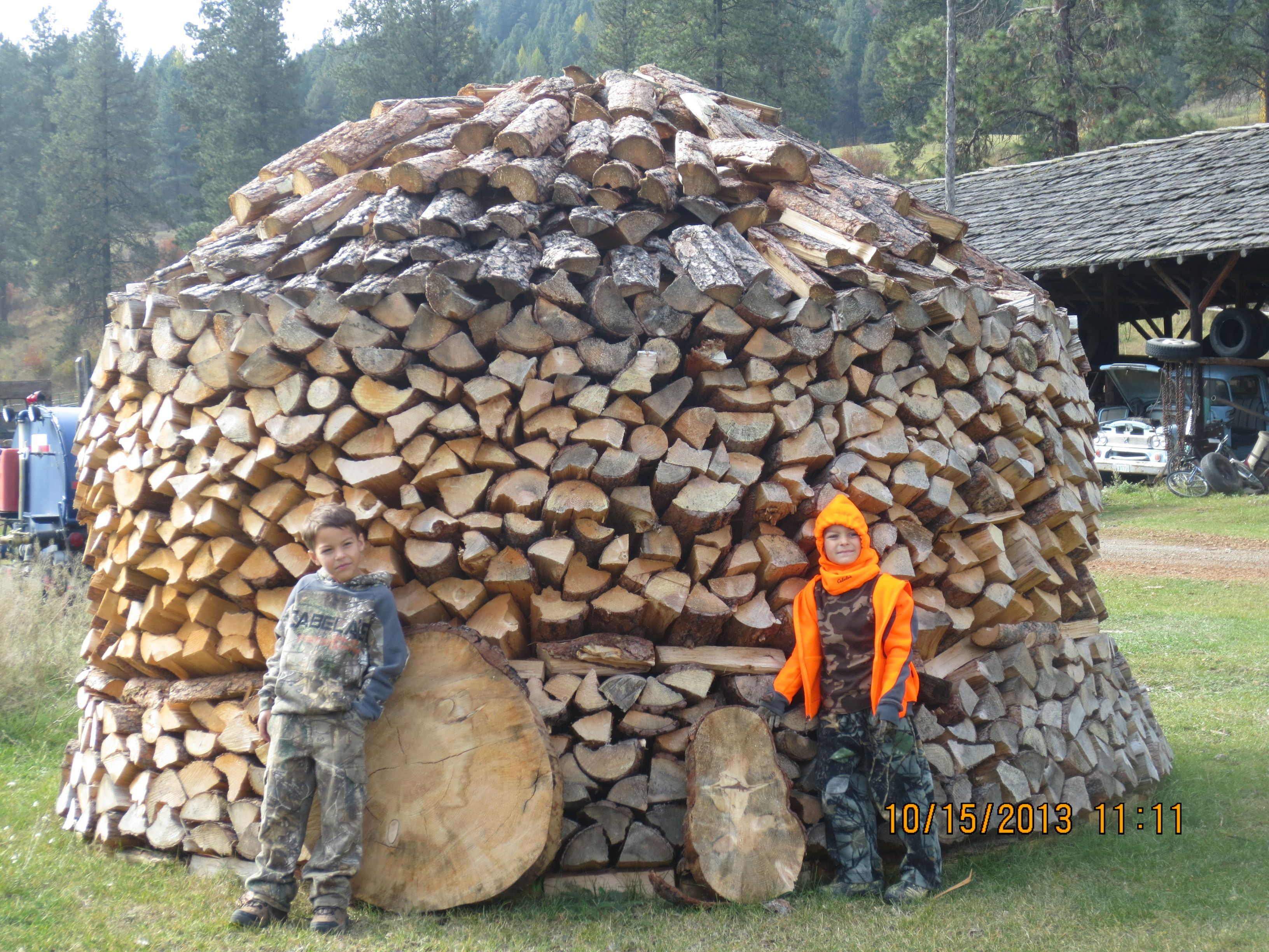 By The Wood Pile