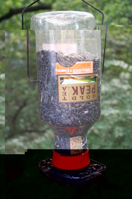 Build a bird feeder from recycled plastic bottles | DIYer