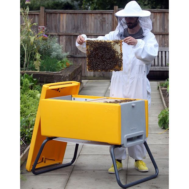 Beau Not Technically A Top Bar Hive, But More Of A Horizontal Langstroth Hive.  The