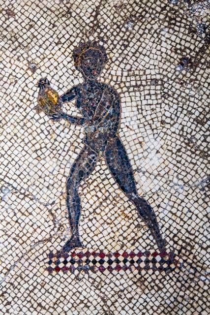 Mosaico ellenistico - romano probabilmente risalente al II sec. a.C. e forse decorativo di una sala da pranzo o di un bagno - portato alla luce nel 1934 a Milazzo.