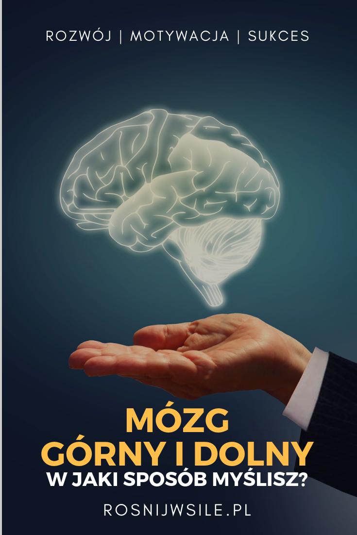 Jak Myslisz W Jakim Trybie Poznawczym Dzialasz Jestes Gornomozgowcem Czy Dolnomozgowcem Odkryj Siebie Swoj Moz Self Development Development Mindfulness