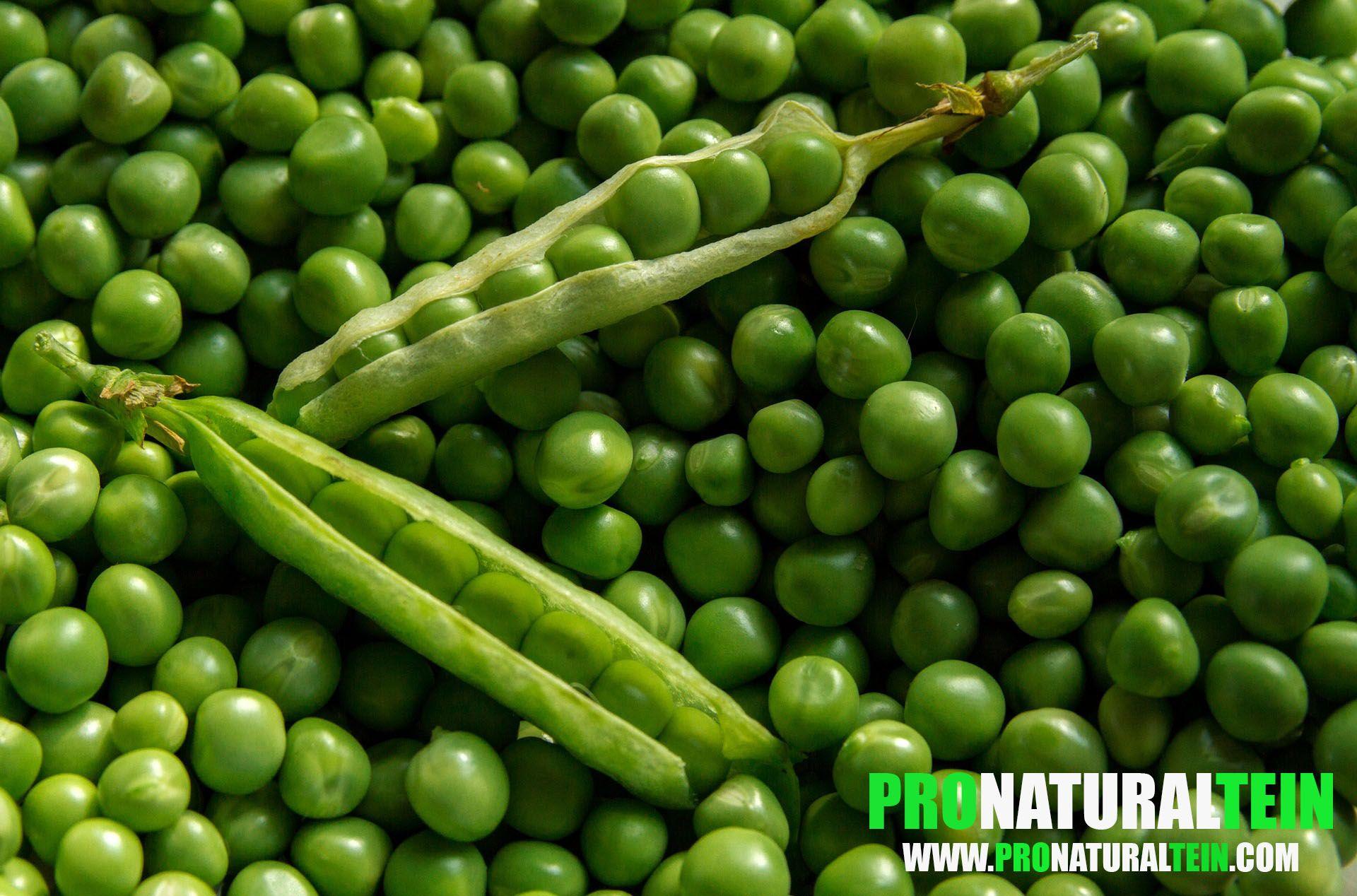 What Is Pea Protein Powder Growing Peas Name Of Vegetables Peas