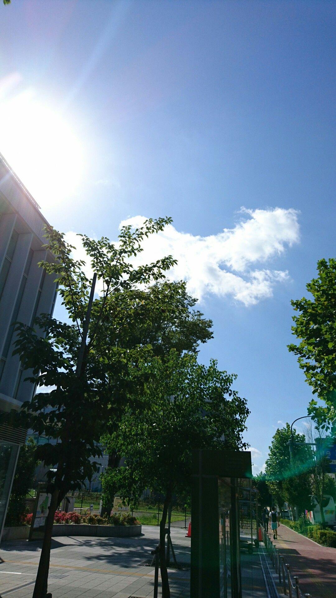Pin oleh arini syanti di tokyo sky cloud Fotografi