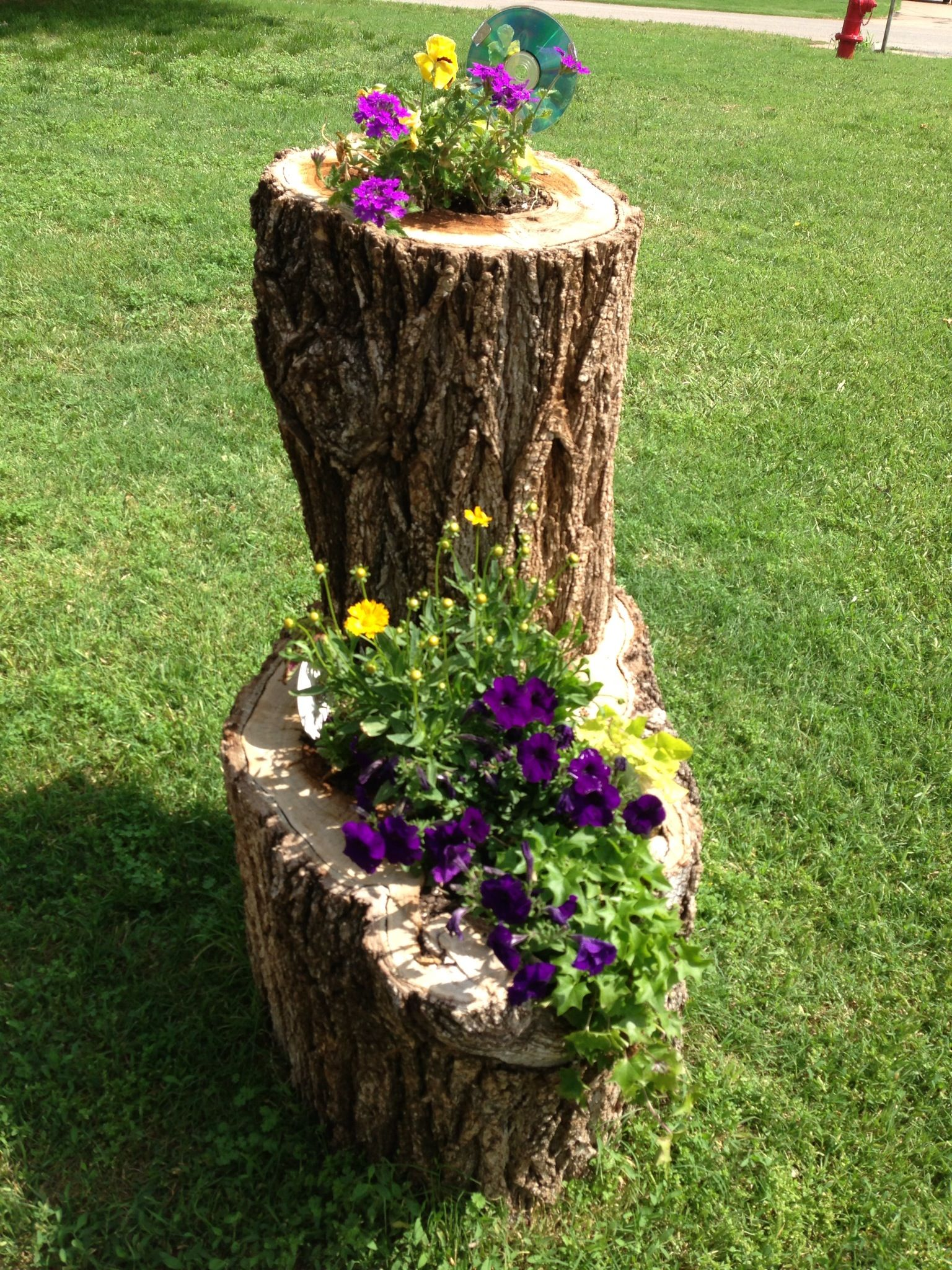 What to do with the tree stump So many beautiful ideas This was