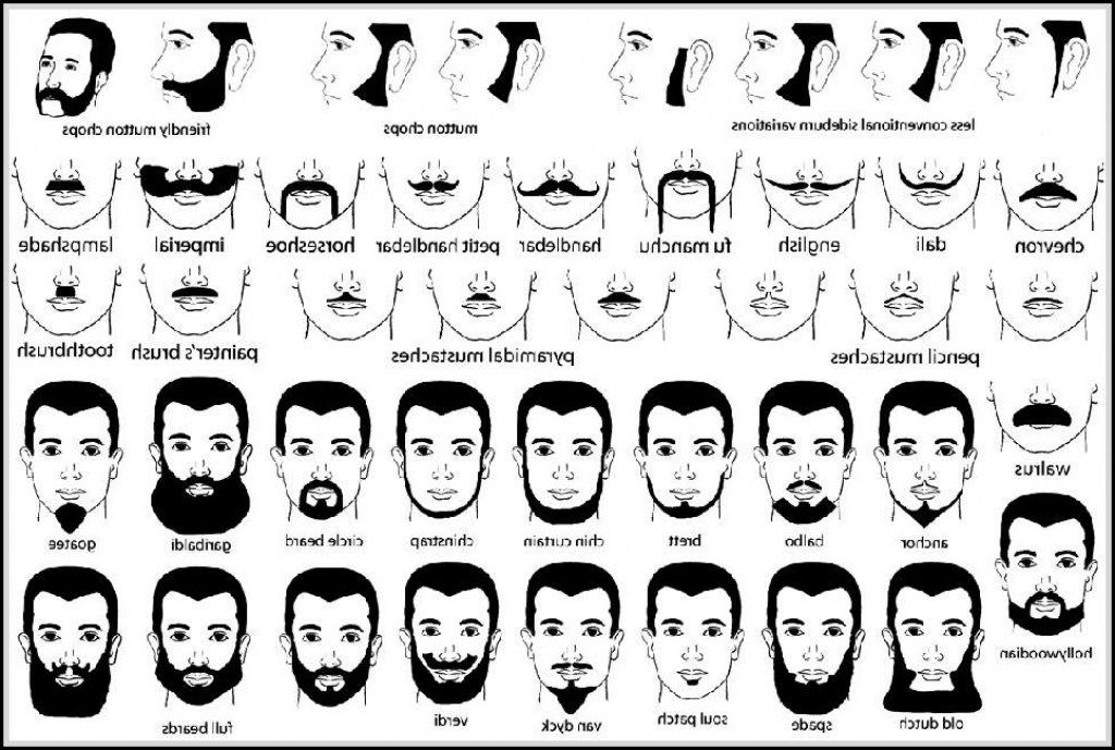 Cool Names Of Facial Hair Styles You Need To Know Within Different Natural Hairstyles Runnerswayorg