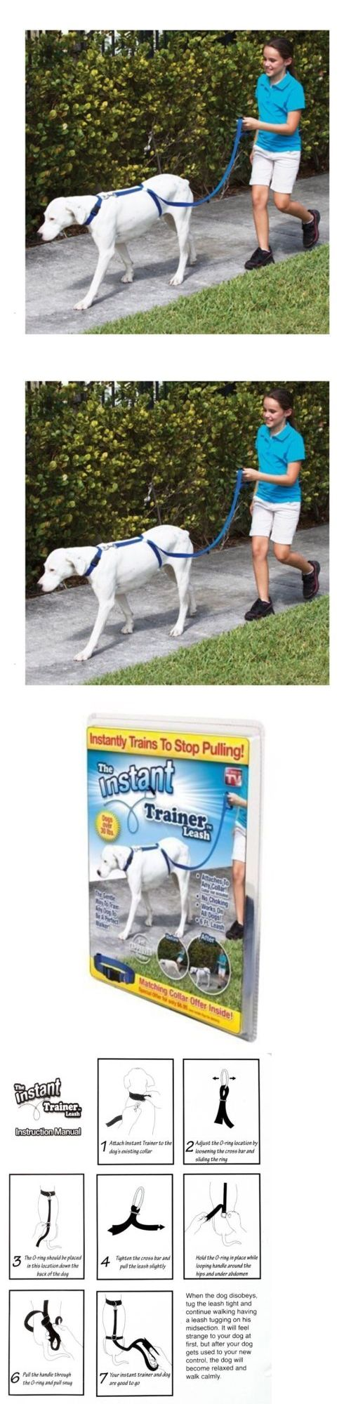 Wholesale Lots 48760 Stop Pulling And Walk Easy Instant Trainer