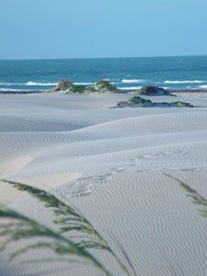 Definately Can To A Texas Beach Vacation South Padre Island