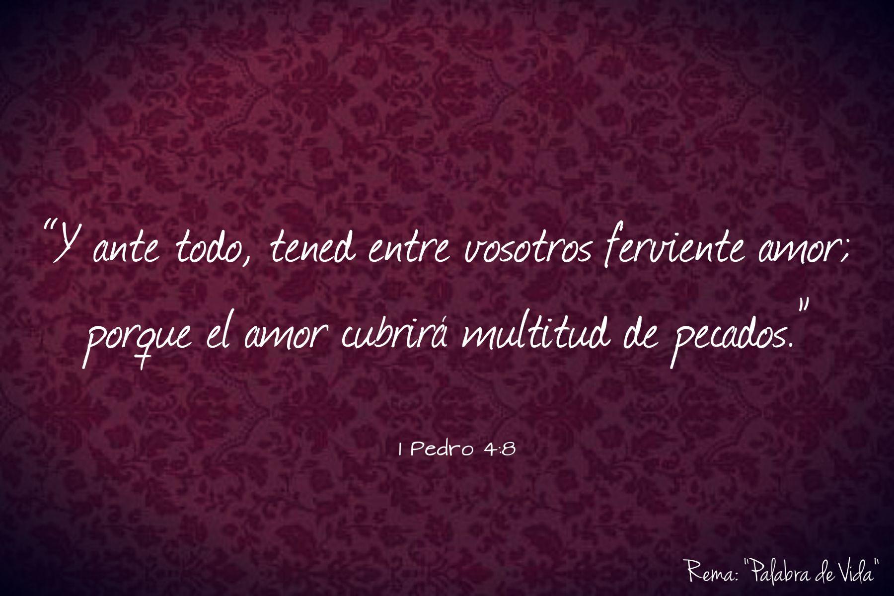 1 Pedro 4 8