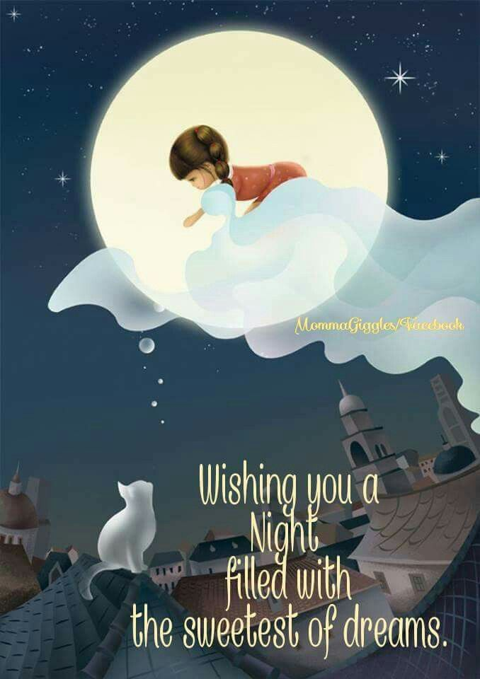 Good night beautiful!!!! I hope you sleep well. I will met ...