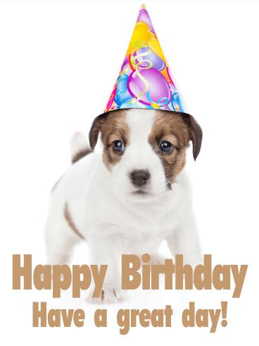 Festive Balloons Happy Birthday Card
