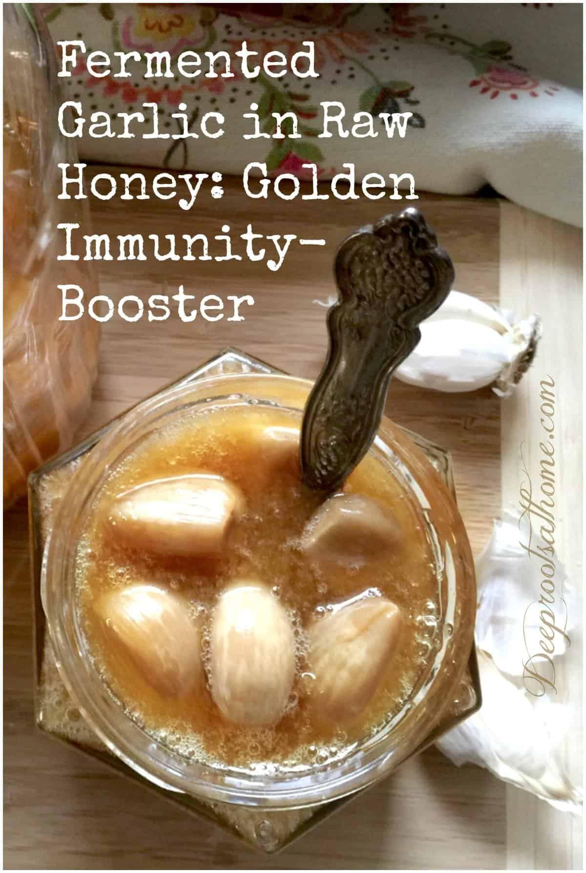 Fermented Garlic in Raw Honey: Golden Immunity-Booster. #food #recipe #health #healthy #diy #natural...