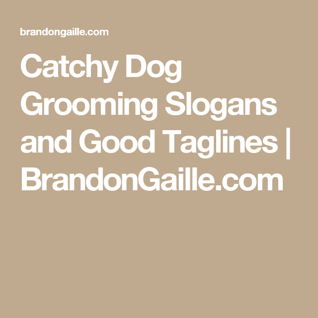 51 Catchy Dog Grooming Slogans and Good Taglines | grooming