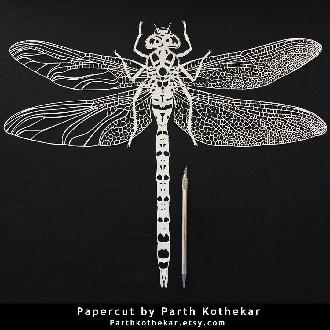 337 kedvels 13 hozzszls parth kothekar parthkothekar papercut dragonfly papercutting paper art by parthkothekar jeuxipadfo Gallery
