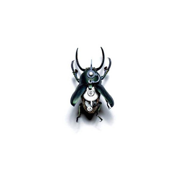 Industrialisation vs Nature - Geek Insect Ornaments » Thoughts from... ❤ liked on Polyvore featuring home, home decor, black, steampunk, steampunk home decor and black home decor