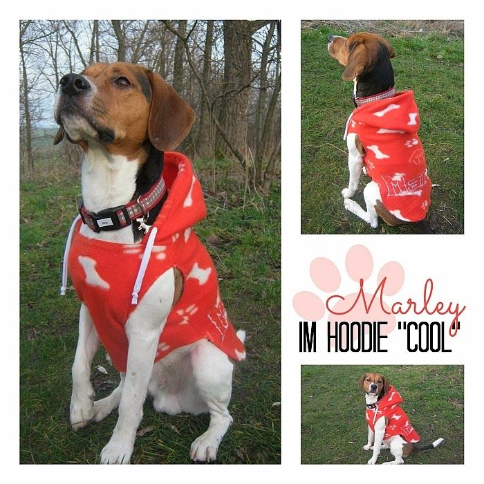 free pattern - Hunde Hoodie Schnittmuster | Dog clothes/patterns ...