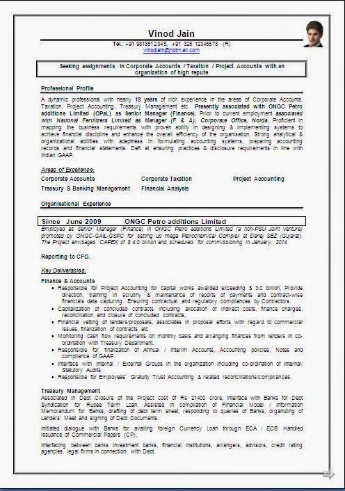 cv formats free download Sample Template ofBeautiful Curriculum - profile format