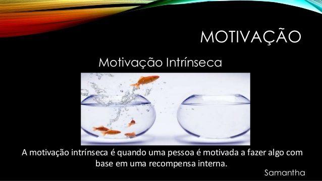 Motivação Motivação Intrínseca A Motivação Intrínseca é