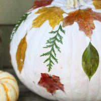 Looking for DIY ideas you can make with autumn leaves? From home decor to crafts, I'm sure you'll find lots to try here.     DIY Ideas for Autumn Leaves The Fall Season means tons of beautiful bright autumnleaves. Don't you just love it when the leaves change its color? Since we have