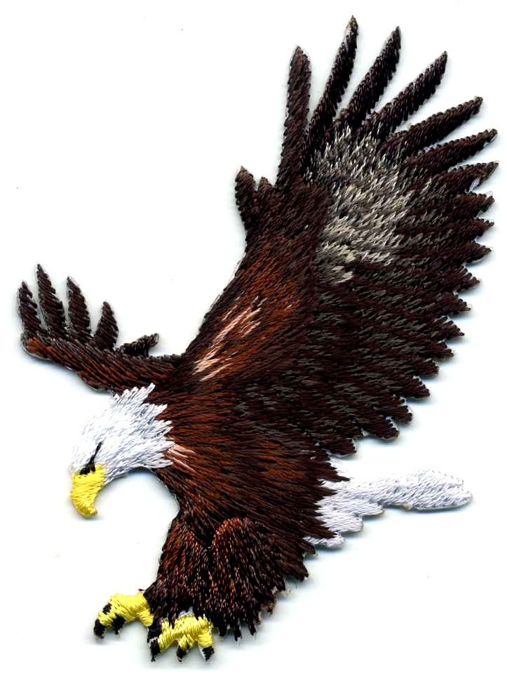 Fully Embroidered Iron On Applique Patch American Eagle Set Of 2 Eagle
