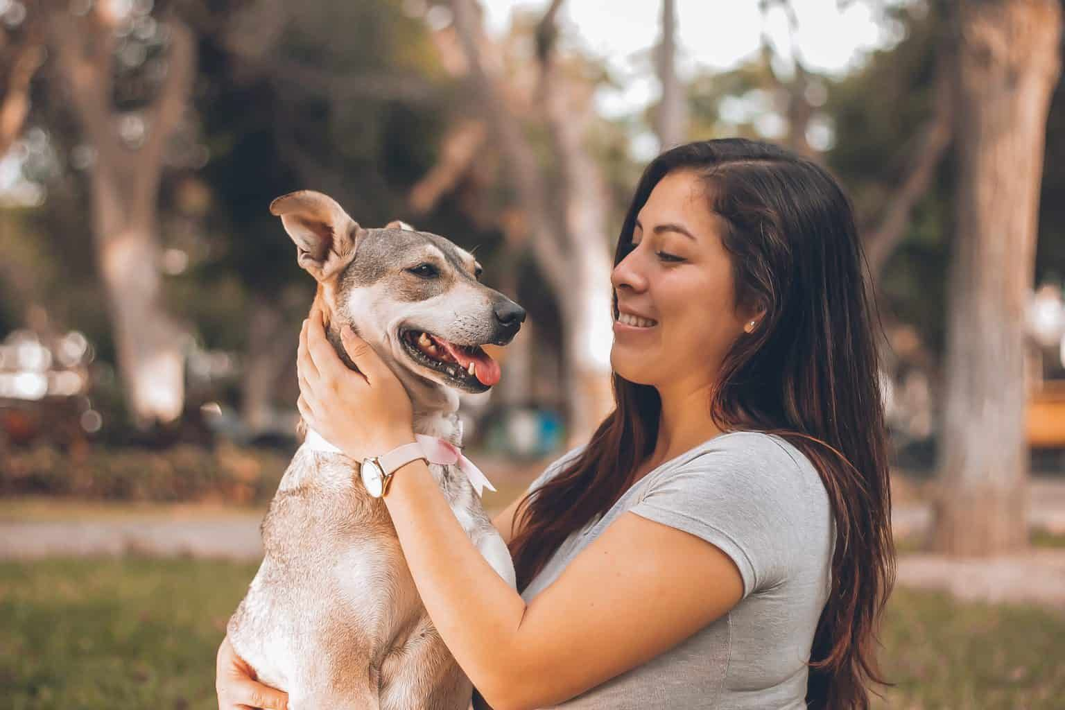 If you are looking for pet sitter jobs but getting