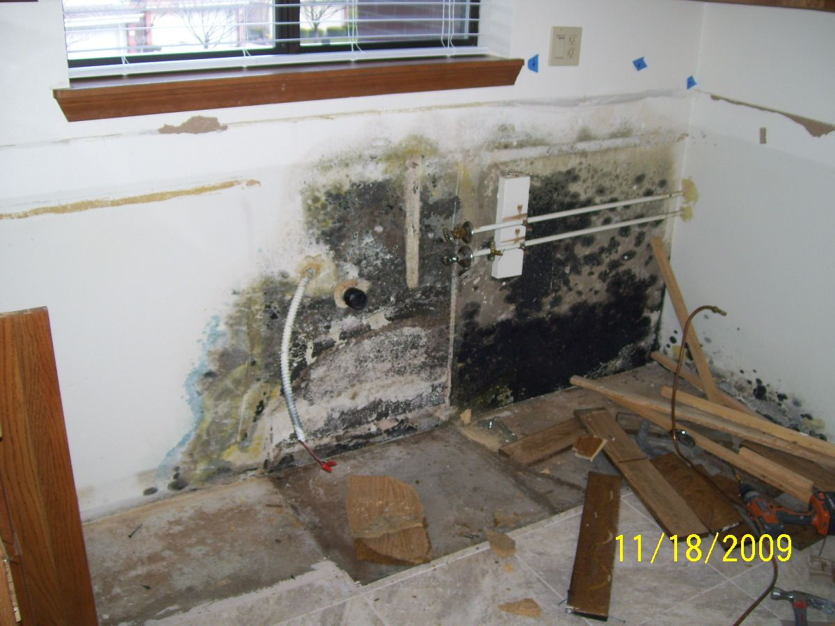 Dishwasher Leak That Went Unnoticed For An Extended Period Of Time And Created Mold Behind The Kitchen Cabinets Dishwasher Leaking Molding Kitchen Cabinets