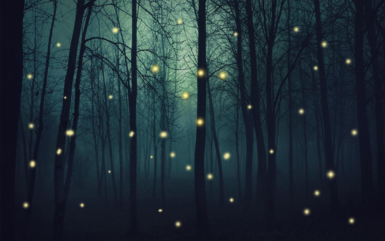 Fireflies Live Wallpaper Enchanted Tree Live Wallpapers Tree