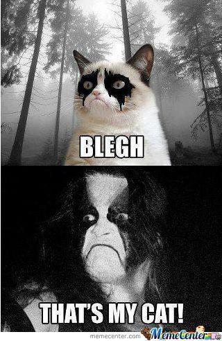 abbaths cat