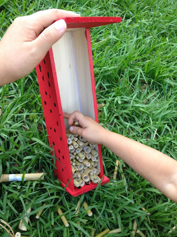How to Build a LadyBug House #plantingdiysimple