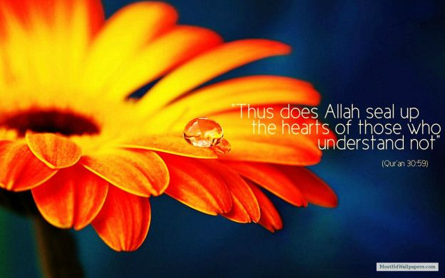 download free islamic images with quotes