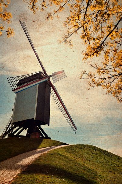 flemish mill by ralucsernatoni