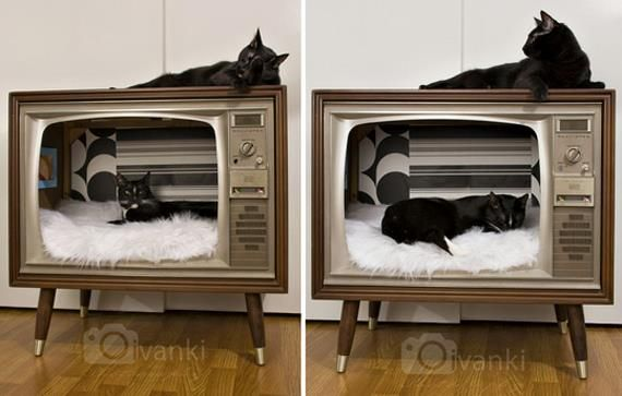midcenturymodernfreak:  Dig these cool cats Daddy-O! - Via