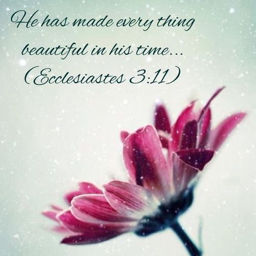 ❤❤❤  Ecclesiastes 3:11 - Beauty at its finest! | Scriptures and Spiritua...