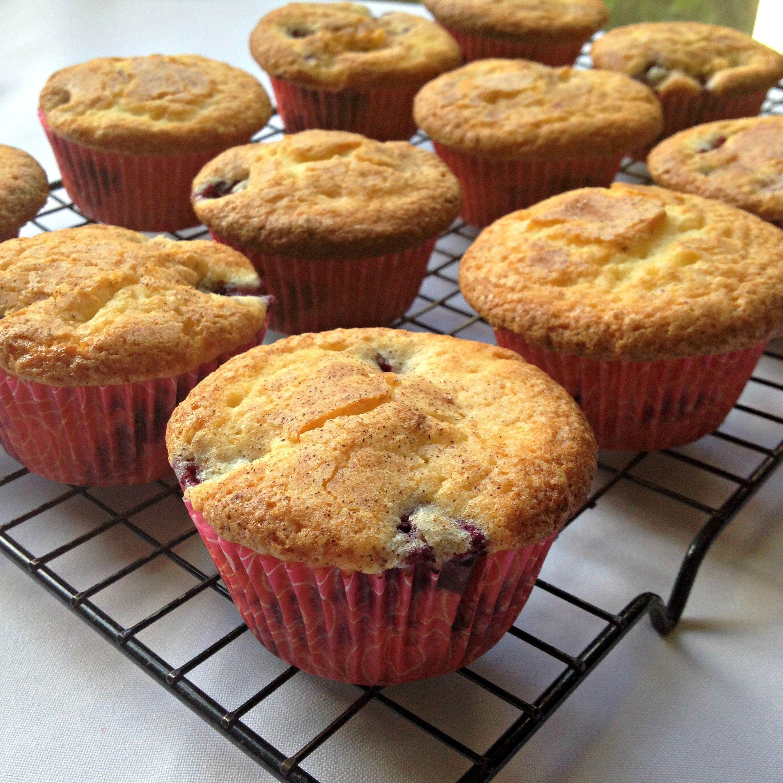 Best of the best blueberry muffins recipe best