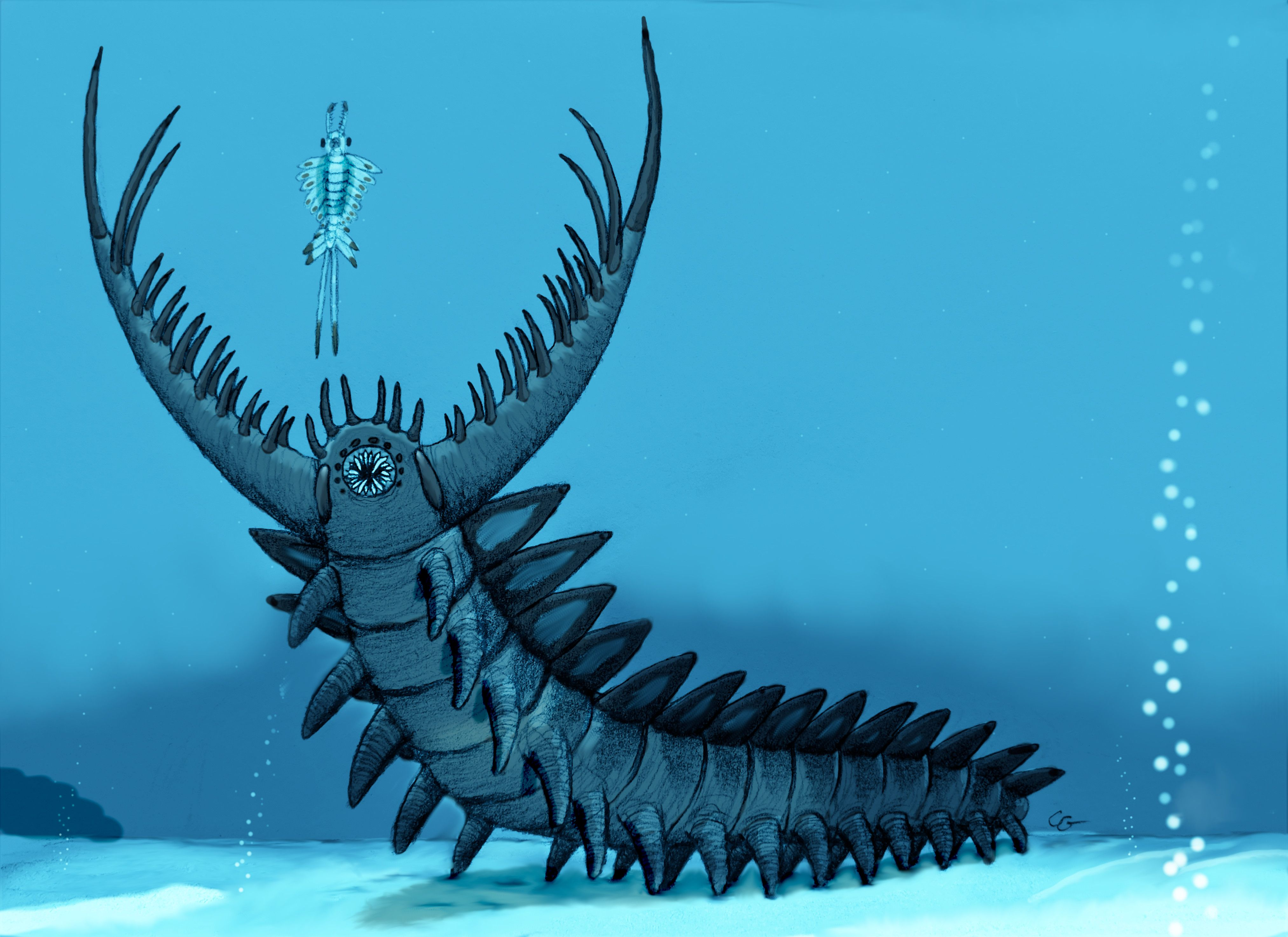 Omnidens amplus by AcroSauroTaurus on DeviantArt in 2021 | Prehistoric  animals, Paleontology, Prehistoric