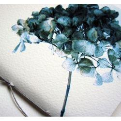 Blue Hydrangea notebook by Pumpkinsputnik for From the Wilde - £8.00