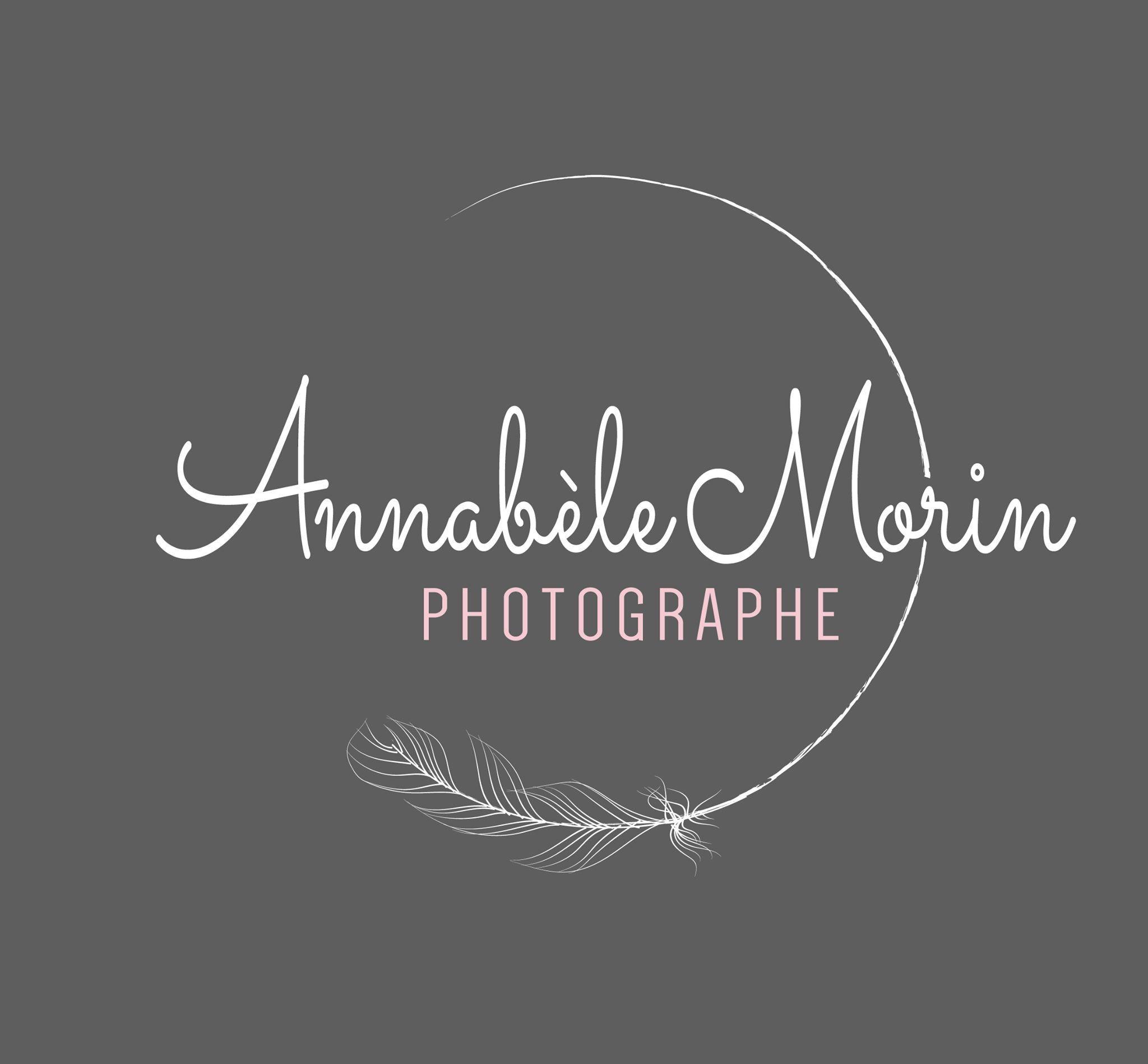 Photography design - feather logo design - gypsy logo design - feminine logo