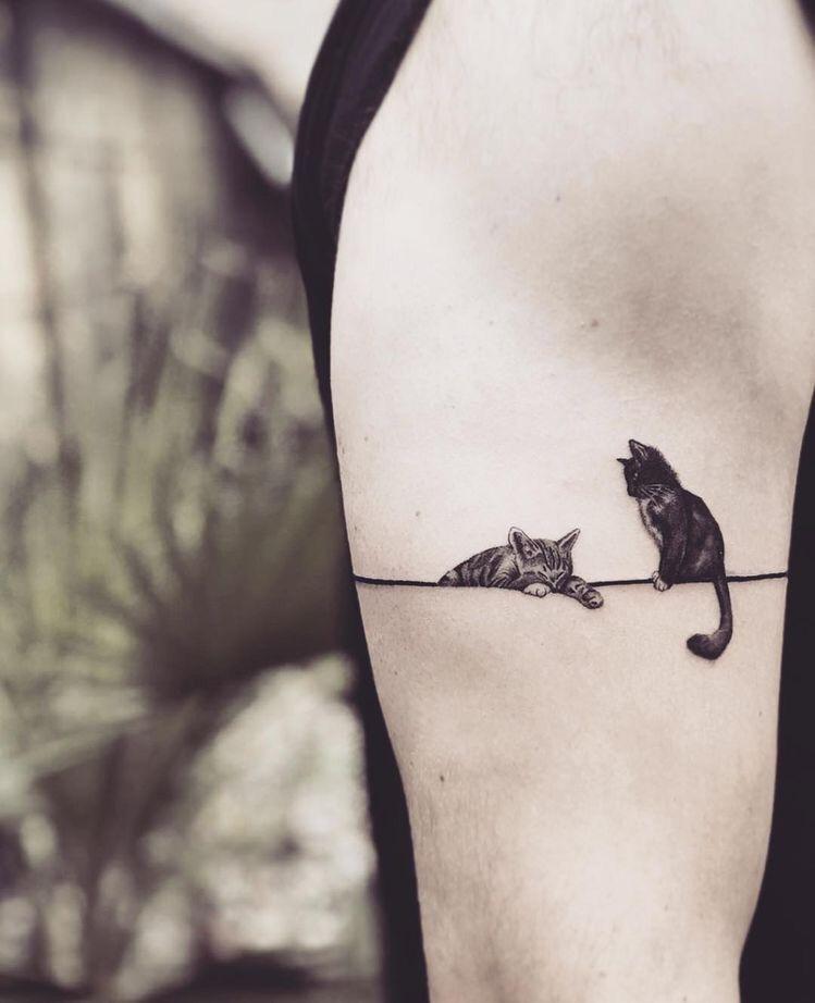 Pin On Tatuajes De Gatos Cats Tattoos