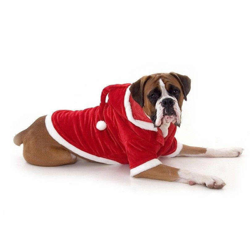 Large Dog Santa Outfit - Large Dog Santa Outfit Animals I Like Dogs, Christmas Dog, Boxer