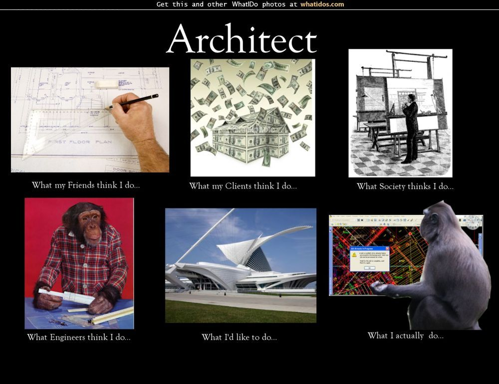 Architects What I Actually Do Google Search What Is An