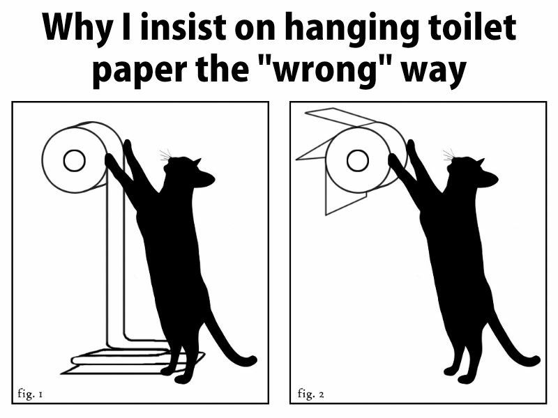 First of all I put the TP on the right way, but this is a good idea  LOL
