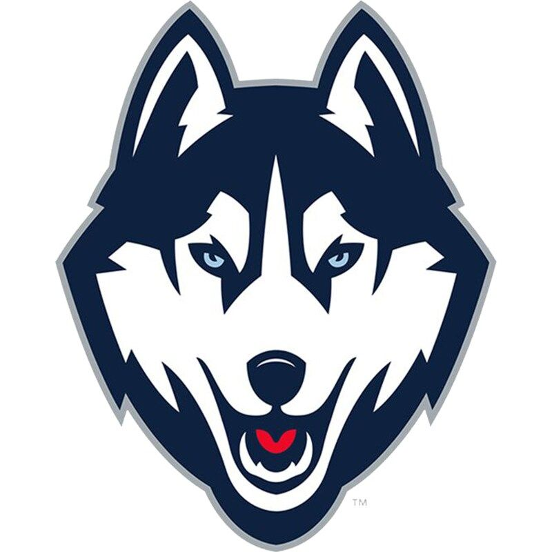 UConn Huskies Fathead Giant Removable Decal