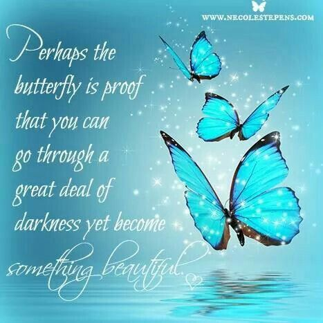 Butterfly Quotes Prepossessing Pinletitia Makowski On Butterfly Expressions  Pinterest